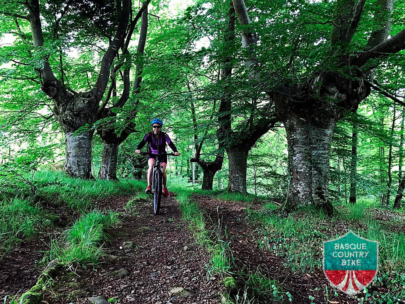 Basque Country Bike